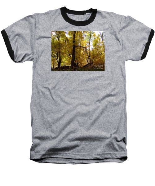 Fall Colors 6169 Baseball T-Shirt by En-Chuen Soo