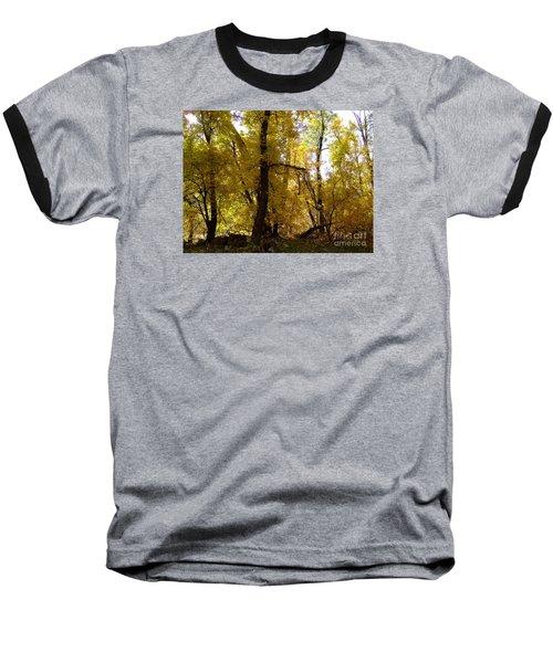 Fall Colors 6169 Baseball T-Shirt