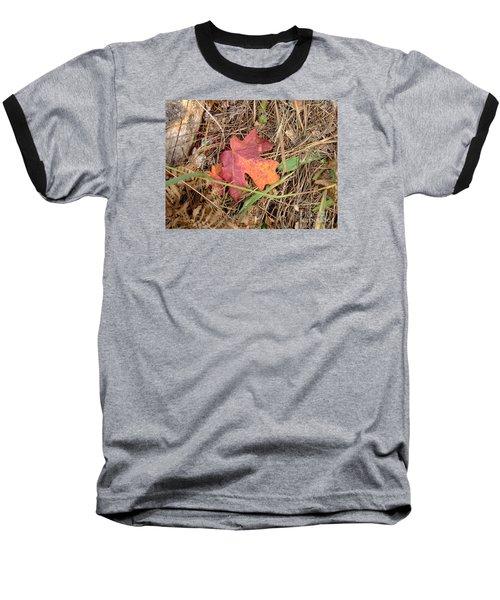 Fall Colors 6312 Baseball T-Shirt by En-Chuen Soo