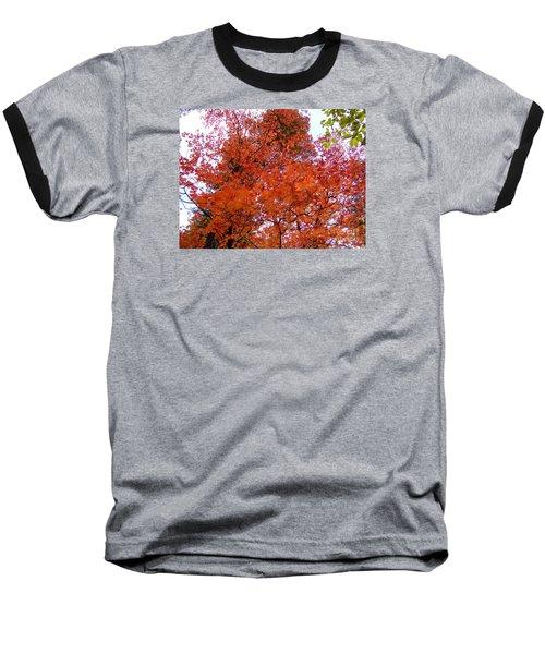 Fall Colors 6359 Baseball T-Shirt by En-Chuen Soo