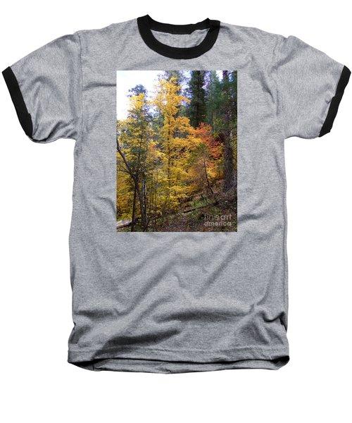 Fall Colors 6368 Baseball T-Shirt by En-Chuen Soo