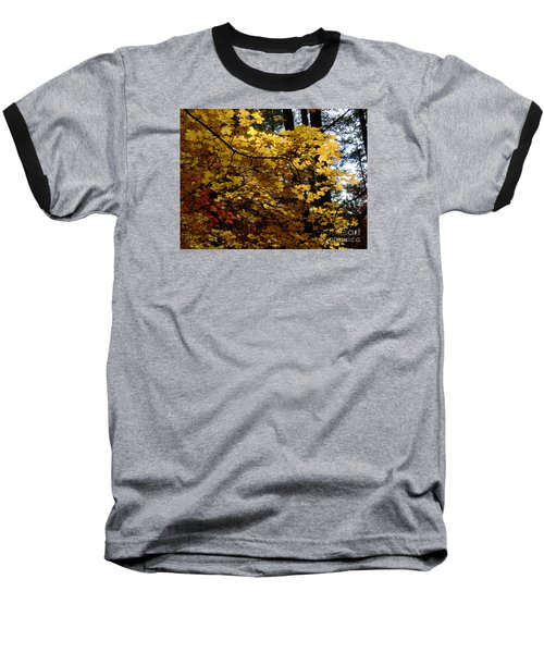 Fall Colors 6372 Baseball T-Shirt by En-Chuen Soo