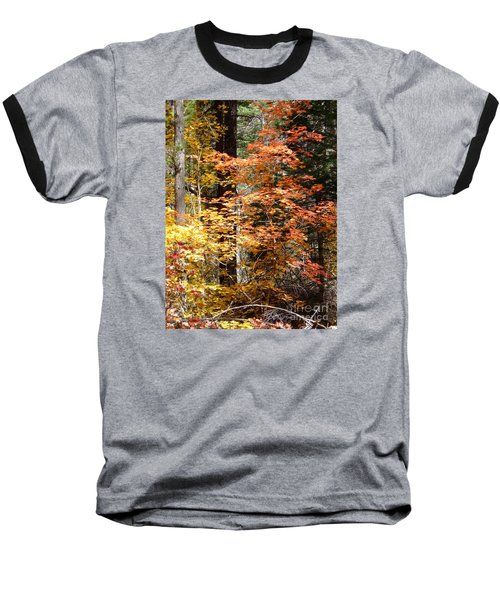 Fall Colors 6412 Baseball T-Shirt by En-Chuen Soo