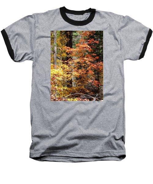 Fall Colors 6412 Baseball T-Shirt