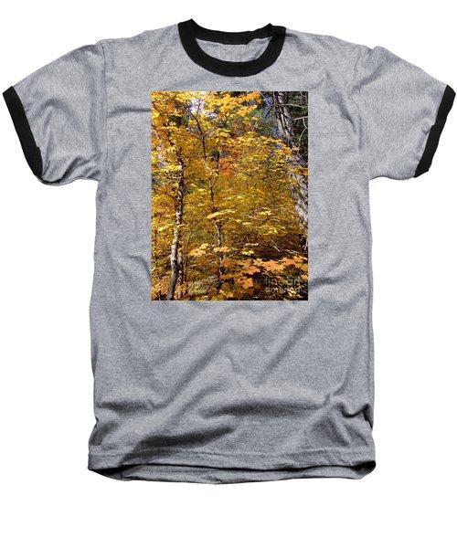 Fall Colors 6446 Baseball T-Shirt by En-Chuen Soo