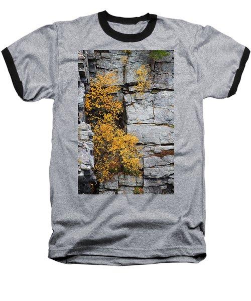 Fall Foliage Colors 01 Baseball T-Shirt