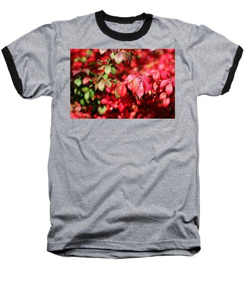 Fall Foliage Colors 10 Baseball T-Shirt