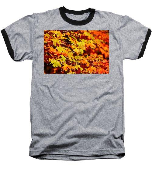Fall Foliage Colors 13 Baseball T-Shirt