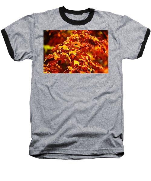 Fall Foliage Colors 14 Baseball T-Shirt