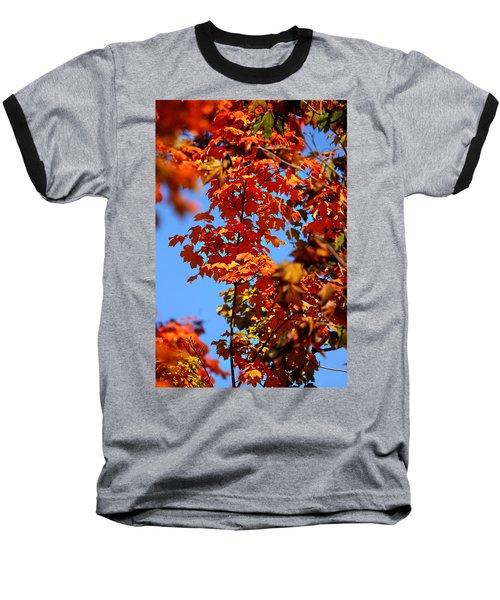 Fall Foliage Colors 15 Baseball T-Shirt