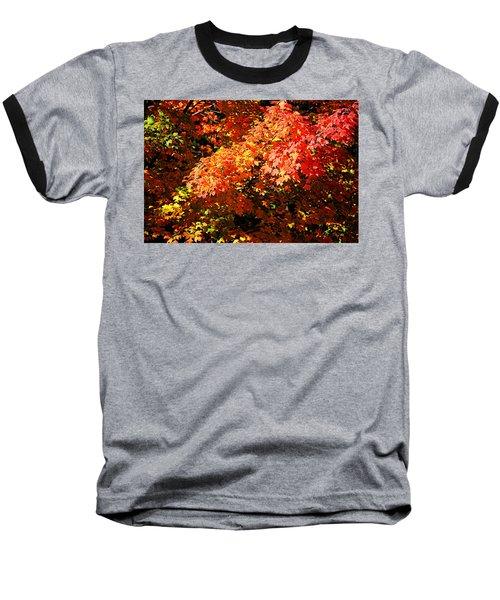 Fall Foliage Colors 21 Baseball T-Shirt