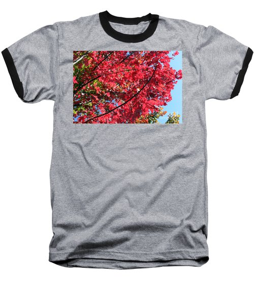 Baseball T-Shirt featuring the photograph Fall In Illinois by Debbie Hart