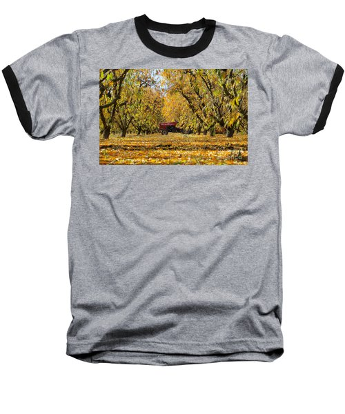Fall In The Peach Orchard Baseball T-Shirt by Jim And Emily Bush