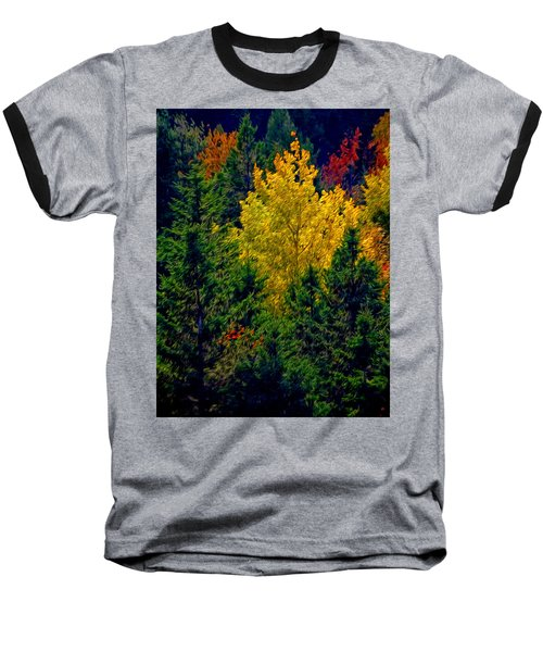 Fall Leaves Baseball T-Shirt by Bill Howard