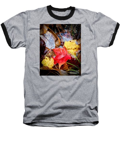 Baseball T-Shirt featuring the photograph Fall Leaves In The Rain by David Perry Lawrence
