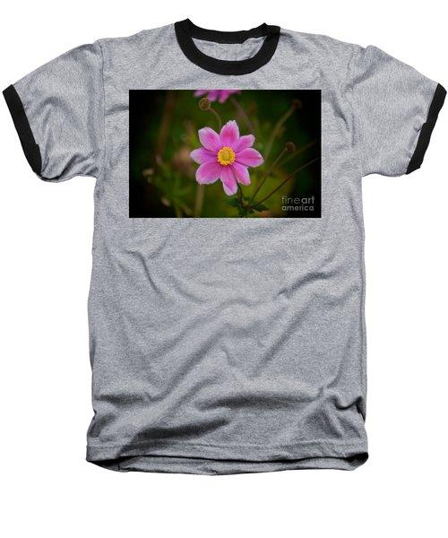 Fall Pink Daisy Baseball T-Shirt