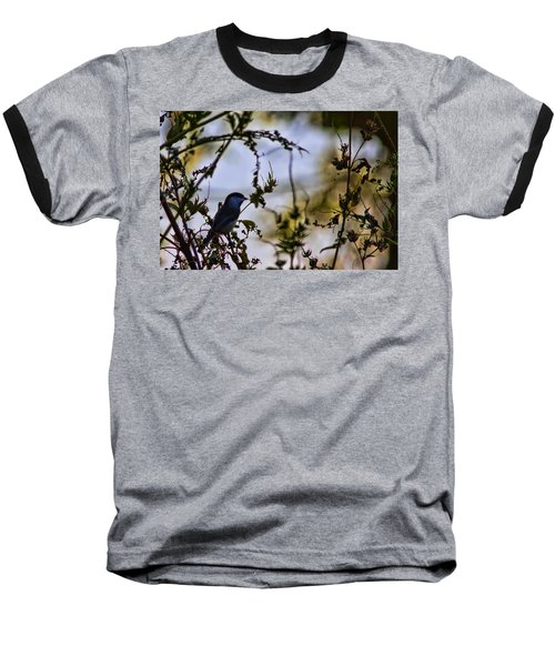 Fall Silhouette Baseball T-Shirt by Gary Holmes