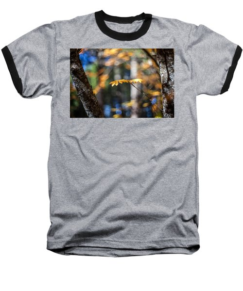 Fall Suspended Baseball T-Shirt by Aaron Aldrich
