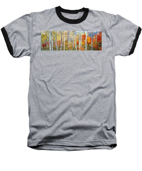 Fall Trees, Shinhodaka, Gifu, Japan Baseball T-Shirt