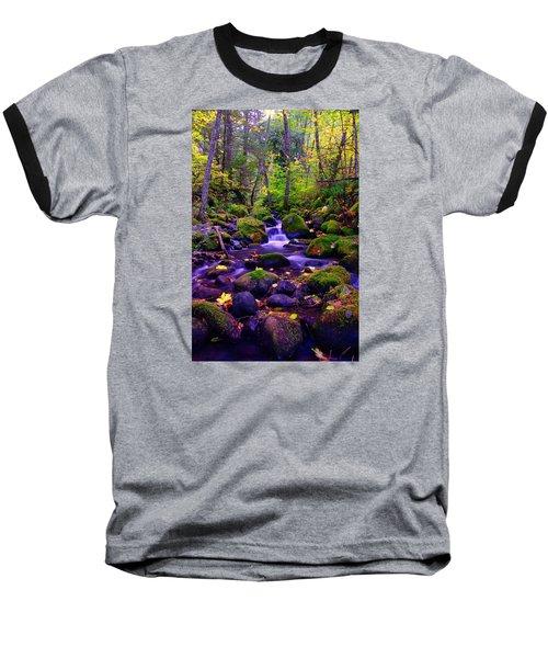 Fallen Leaves On The Rocks Baseball T-Shirt