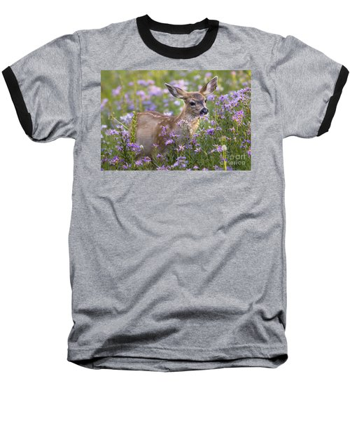 Fawn In Asters Baseball T-Shirt