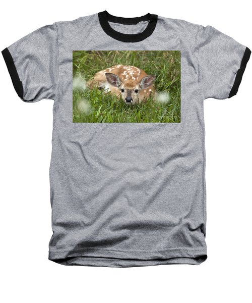Fawn Baseball T-Shirt by Jeannette Hunt