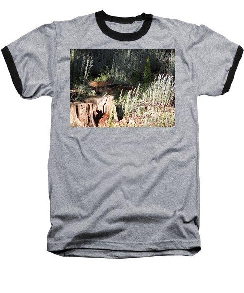 Fawn Front Yard Divide Co Baseball T-Shirt
