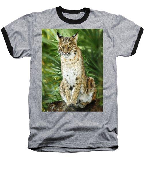 Felix Baseball T-Shirt