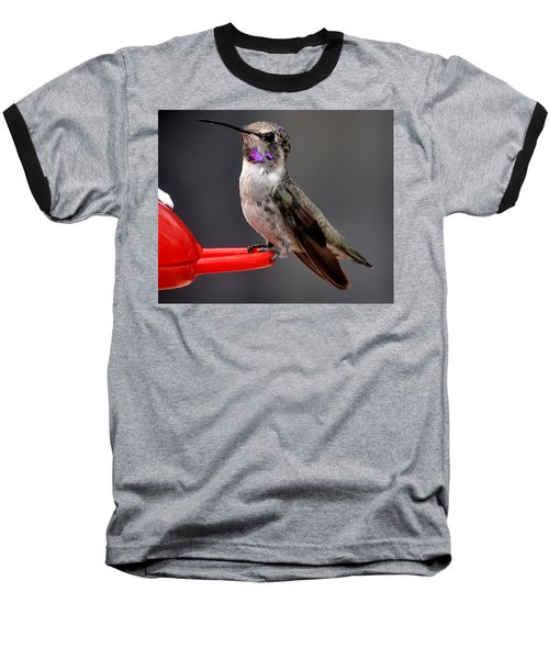 Baseball T-Shirt featuring the photograph Female Anna's Hummingbird On Perch Posing For Her Supper by Jay Milo