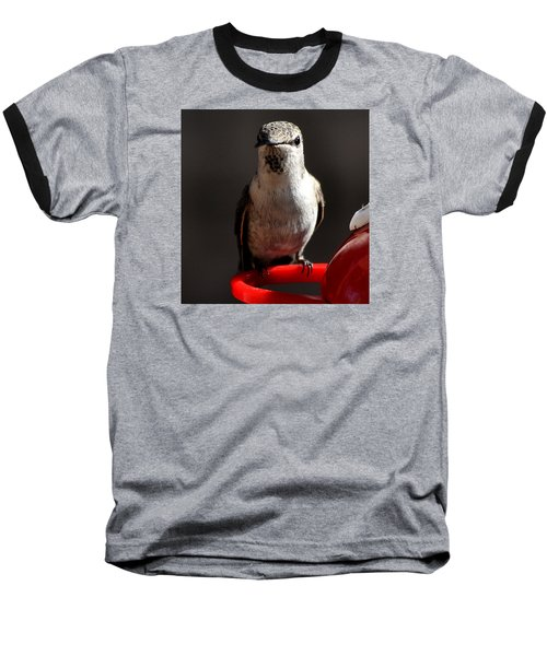 Baseball T-Shirt featuring the photograph Female Anna Hummingbird by Jay Milo