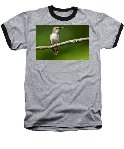 Baseball T-Shirt featuring the photograph Female Rufous Hummingbird In A Tree by Jeff Goulden