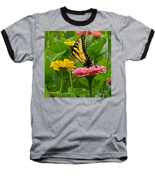 Female Tiger Swallowtail Butterfly With Pink And Yellow Zinnias Baseball T-Shirt
