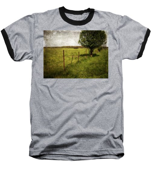 Fence With Tree Baseball T-Shirt