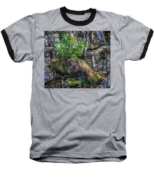 Fern In The Swamp Baseball T-Shirt by Jane Luxton