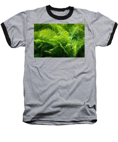 Ferns 1 Baseball T-Shirt by Alexander Senin