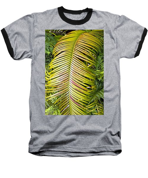 Baseball T-Shirt featuring the photograph Ferns by Kate Brown