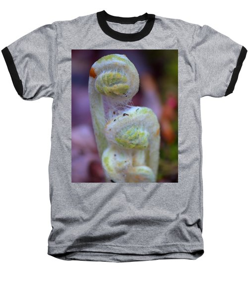 Fiddlehead Fern Baseball T-Shirt