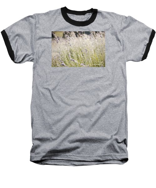 Baseball T-Shirt featuring the photograph Field Of Lavender At Clos Lachance Vineyard In Morgan Hill Ca by Artist and Photographer Laura Wrede