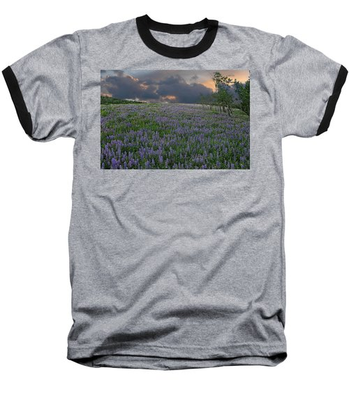 Field Of Lupine Baseball T-Shirt by Ed Hall
