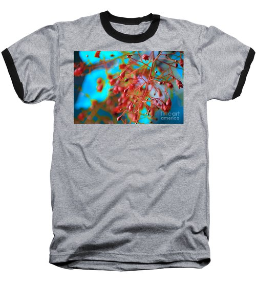 Fiery Red Clusters - Illawarra Flame Tree Baseball T-Shirt