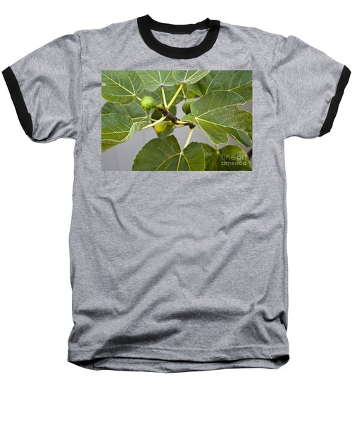 Baseball T-Shirt featuring the photograph Figalicious by David Millenheft