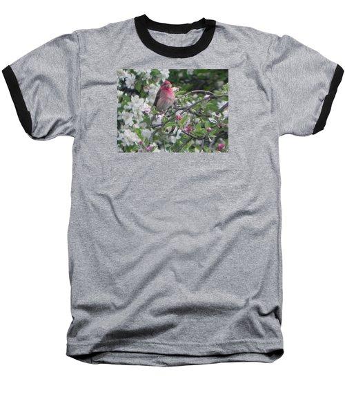 Finch In Apple Tree Baseball T-Shirt by Christine Lathrop