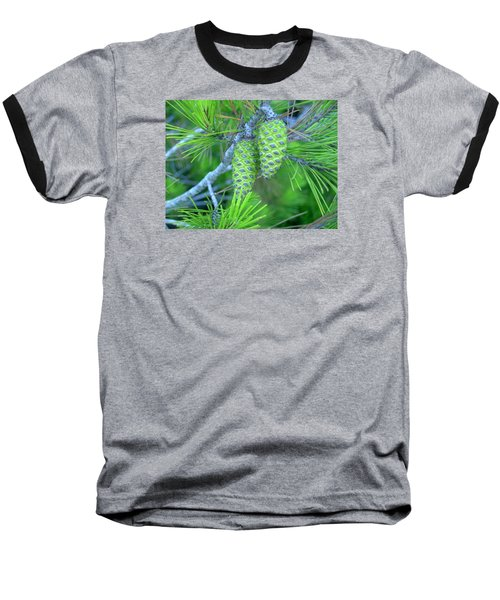 Fir Cones Baseball T-Shirt