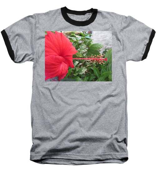 Fire And Ice Hibiscus Baseball T-Shirt