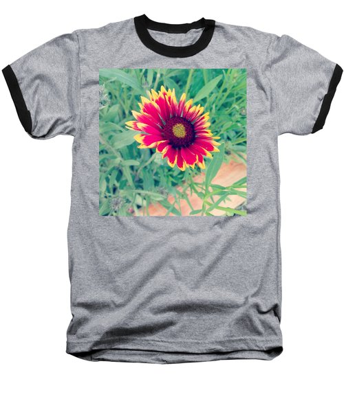 Fire Daisy Baseball T-Shirt by Thomasina Durkay