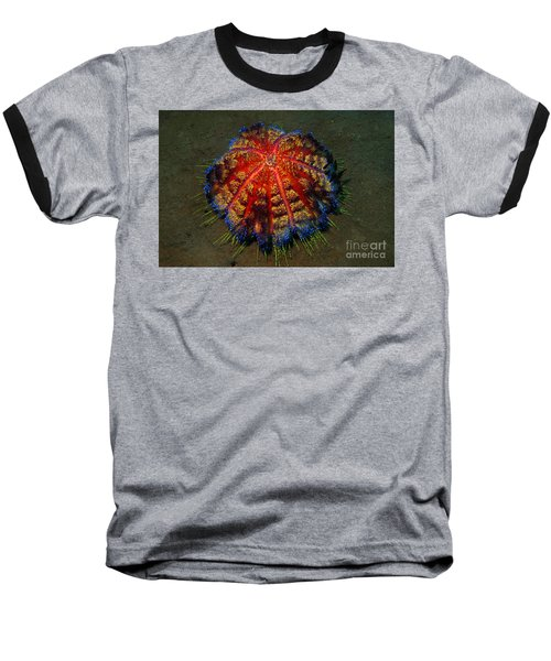 Baseball T-Shirt featuring the photograph Fire Sea Urchin by Sergey Lukashin