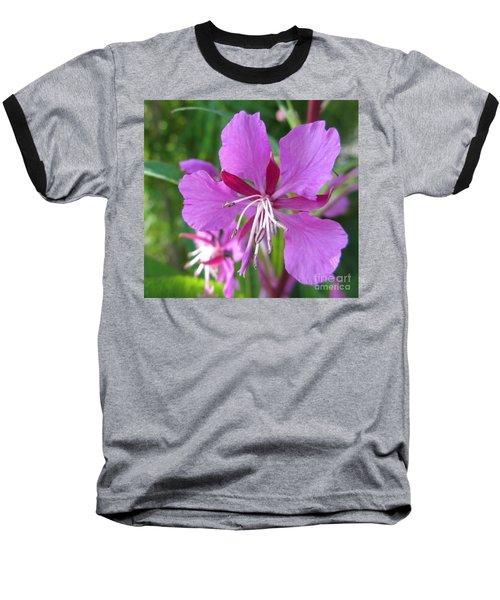 Fireweed 1 Baseball T-Shirt