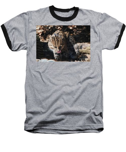 Fishing Cat Baseball T-Shirt by DejaVu Designs