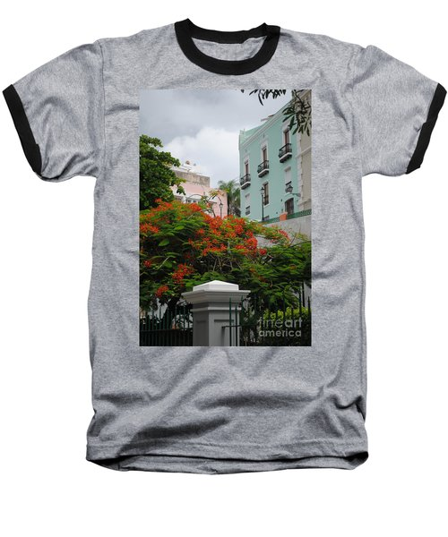 Flamboyan In Park Baseball T-Shirt