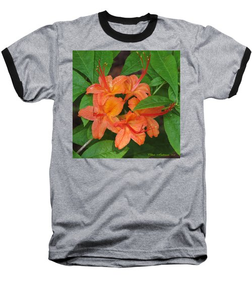 Flame Azalea Baseball T-Shirt by Chris Anderson